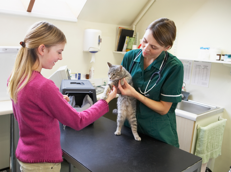 Veterinary Visit