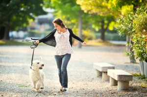 River Run Pet Sitters LLC - Daily Dog walking in Red Bank, NJ and surrounding areas